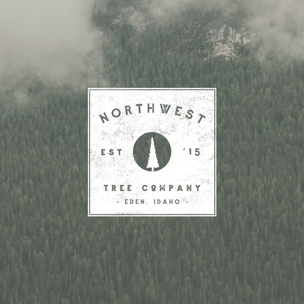 North West Tree Logo
